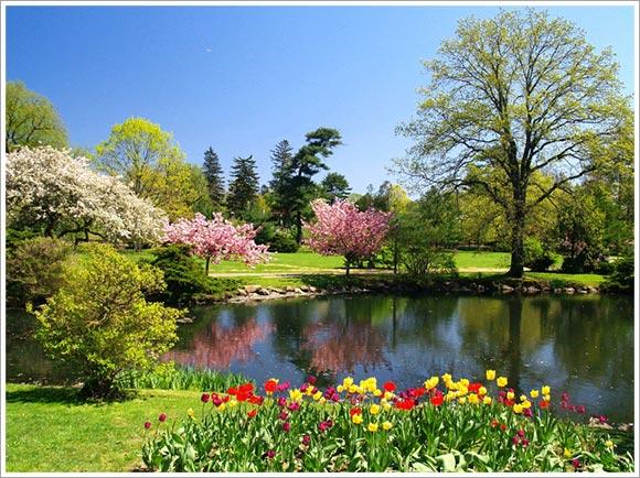 primavera-parco.jpg